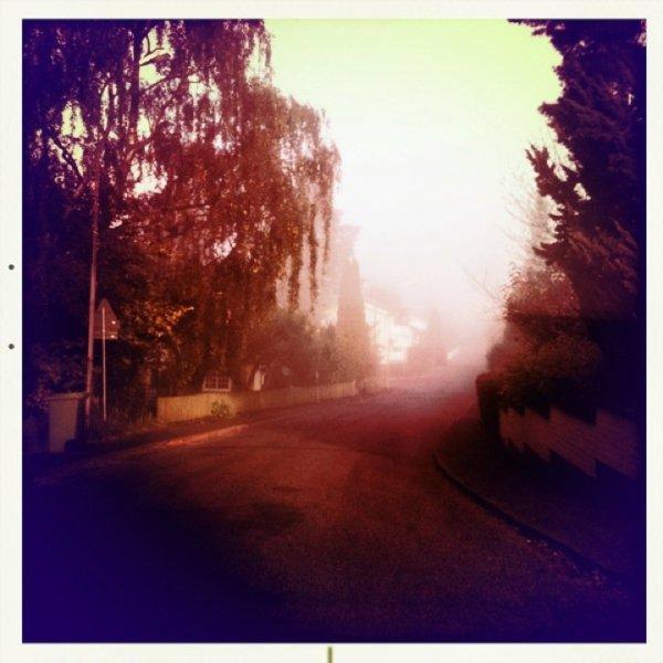 sofialundberg-dimma-morgon-bild
